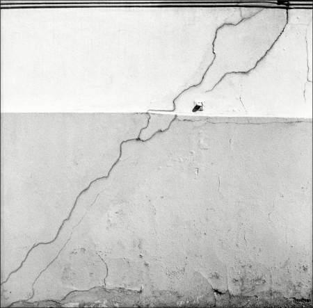 Wall-2-copy2