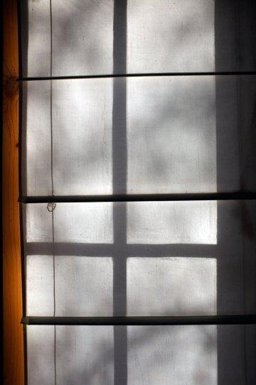 Taradale-window-n