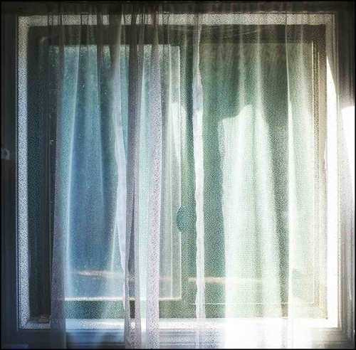 Gellibrand-window