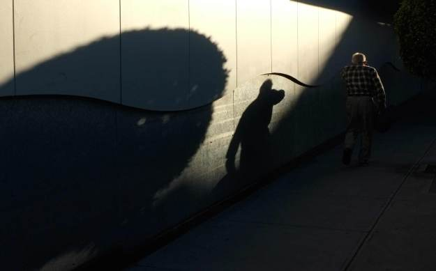 shadow-and-man-3