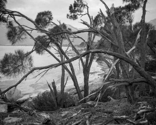 Greg-Wayn-Flinders-Island-1
